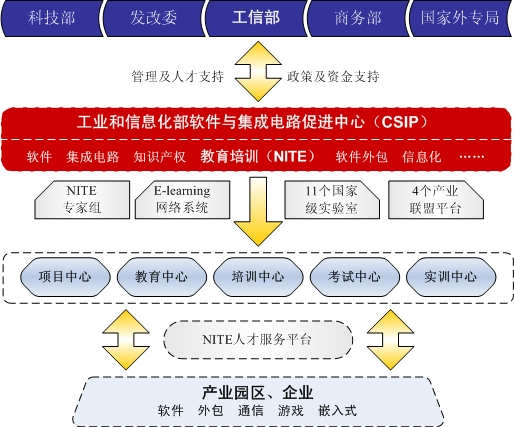 NITE组织机构